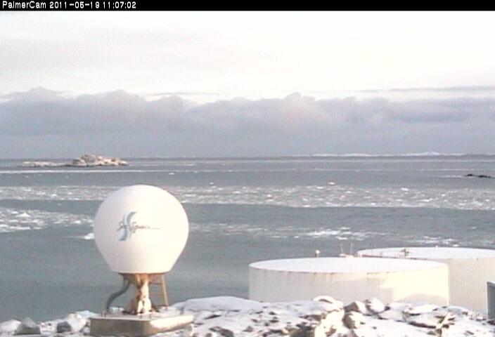Cтанция Палмер (Антарктика)